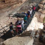 Adroaldo Tapetes Promove Viagem Para Arquitetos Parceiros (2)