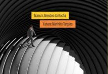 Livro Desenvolvendo Organizaçãoes Capa Amazon 711x1024