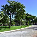 Parque Estadual Do Cocó (3)