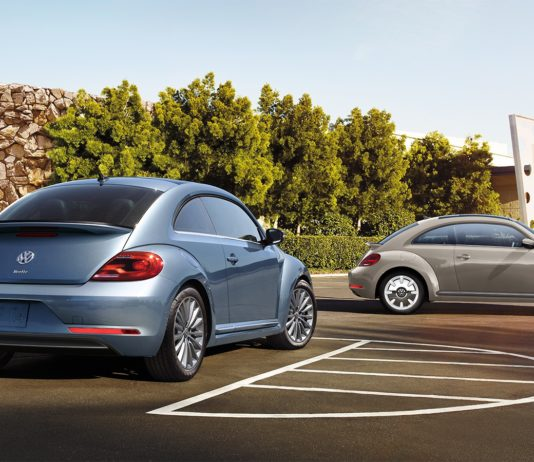 2019 Beetle Final Edition Large 8693