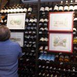 Exposição Brava Wine