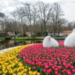 Keukenhof Gardens Netherlands Tulips And Sculpture Pond