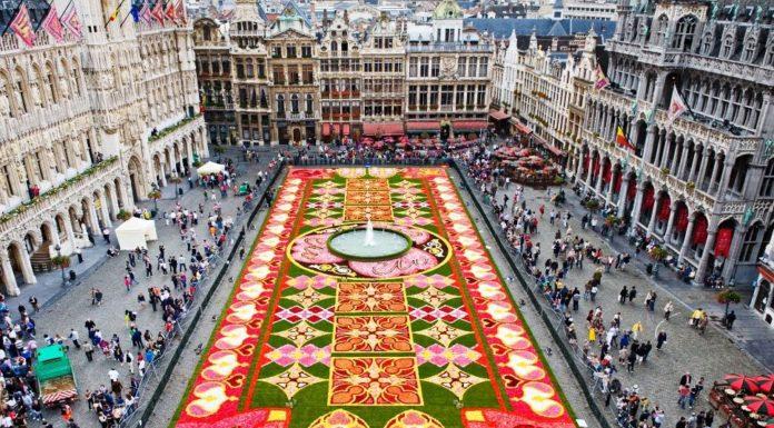 Bruxelas Carpete Flores Grand Place