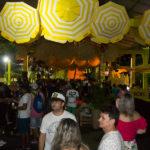 Camarote Viva   Carnaval Aracati (35)