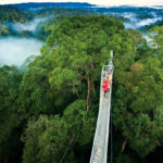 Monteverde Costa Rica 3