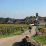 Percurso De 20 Quilometros De Bicicleta Atravessa Vilarejos Como Pommard Onde Se Pode Parar Para Degustacao De Vinhos Nos Arredores De Beaune