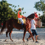 Gp Quarter Horse Show Jockey Club Cearense 18