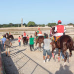 Gp Quarter Horse Show Jockey Club Cearense 21
