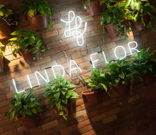 Casa Linda Flor Beleza E Spa_ 24