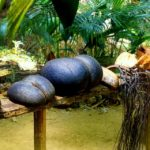 phoca_thumb_l_IMG31-Port-Launay-150x150 Casablanca Turismo apresenta: Ilhas Seychelles