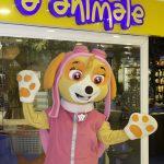 Inauguração Animal Pet (4)