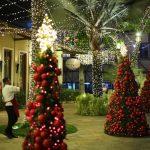 Papai Noel Nos Jardins Open Mall (21)
