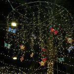 Papai Noel Nos Jardins Open Mall (48)