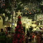 Papai Noel Nos Jardins Open Mall (52)