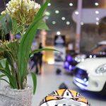 BMW HAUS MOTORS (30)