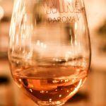 Paroma Wine Lovers (42)